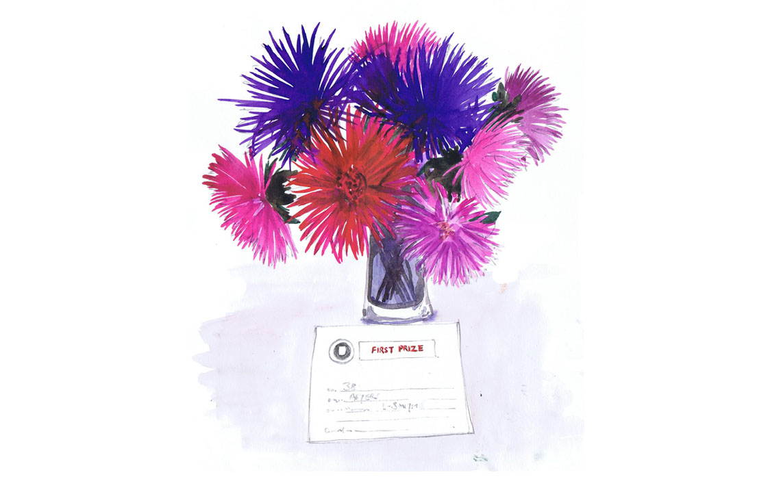 Ink and watercolour illustration of Dahlias by Holly-Anne Rolfe
