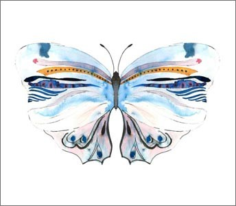 Conran + M&S / Butterflies