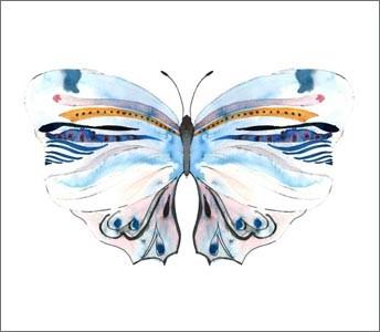 Conran + M&S / Butterflies