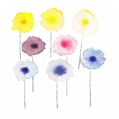 Holly-Anne Rolfe development for Paint by Conran illustrations watercolour flowers